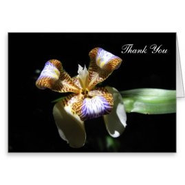 Thank You Card with Walking Iris Flower on a Black Background