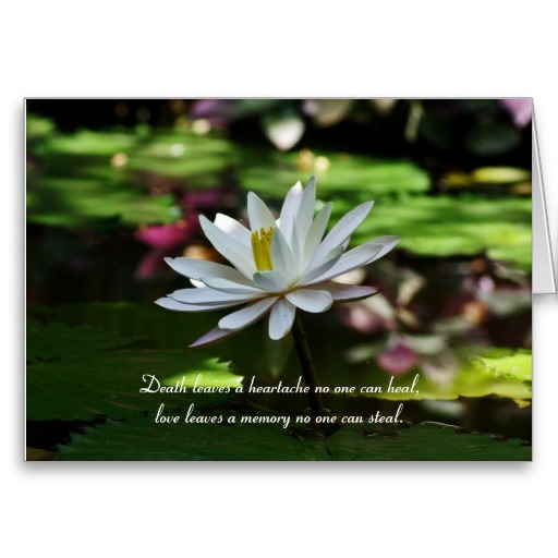 sympathy card with waterlily and quote death leaves a heartache no one can heal love - Bulk Sympathy Cards