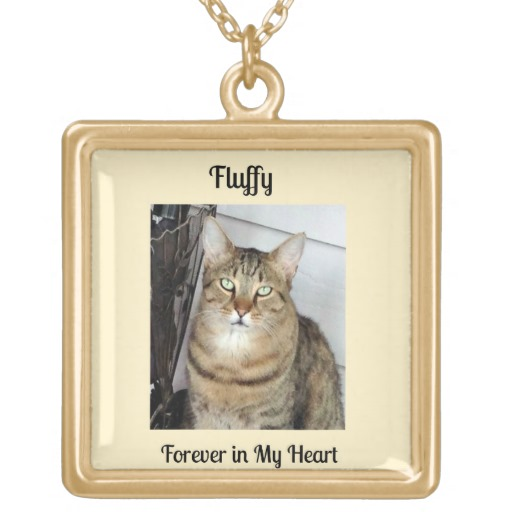 Gold Tone Photo Necklace for Loss of a Cat