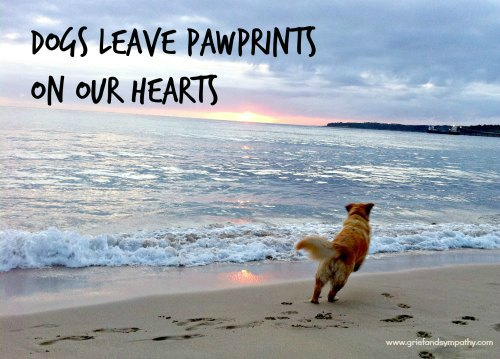 Dogs leave pawprints on our hearts greetings card