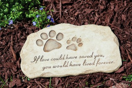 Pet Memorial Stone - If loved could have saved you, you would have lived forever!