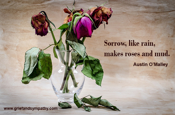 Sorrow, like rain, makes roses and mud. Austin O'Malley