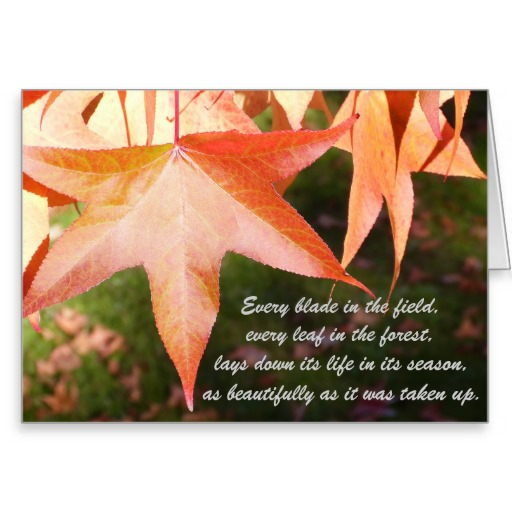 Sympathy Card with Autumn Leaves and Quote