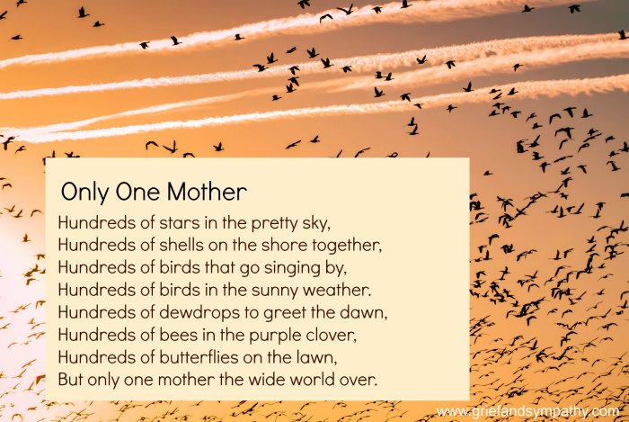 10 Best Funeral Poems for Mum