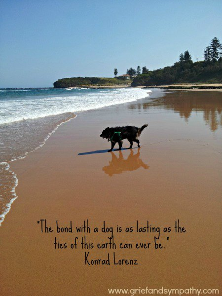 Dog Greeting Card - Konrad Lorenz Quote The bond with a dog are as lasting as the ties of this earth can ever be