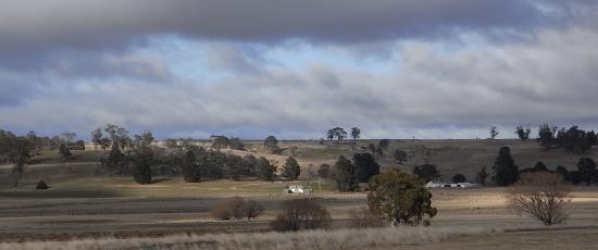 Bleak landscape reflecting sad thoughts on losing a parent