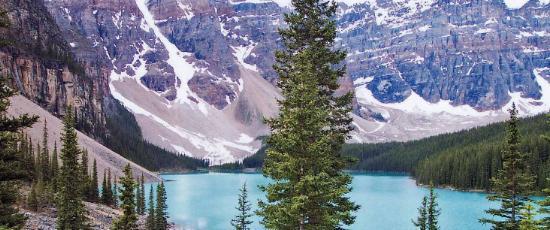 Alaska, Canada - a place to escape the grief of Christmas?