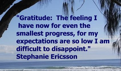 gratitude quote by Stephanie Ericsson