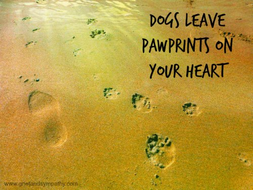Pawprints in the Sand Dog Sympathy Card