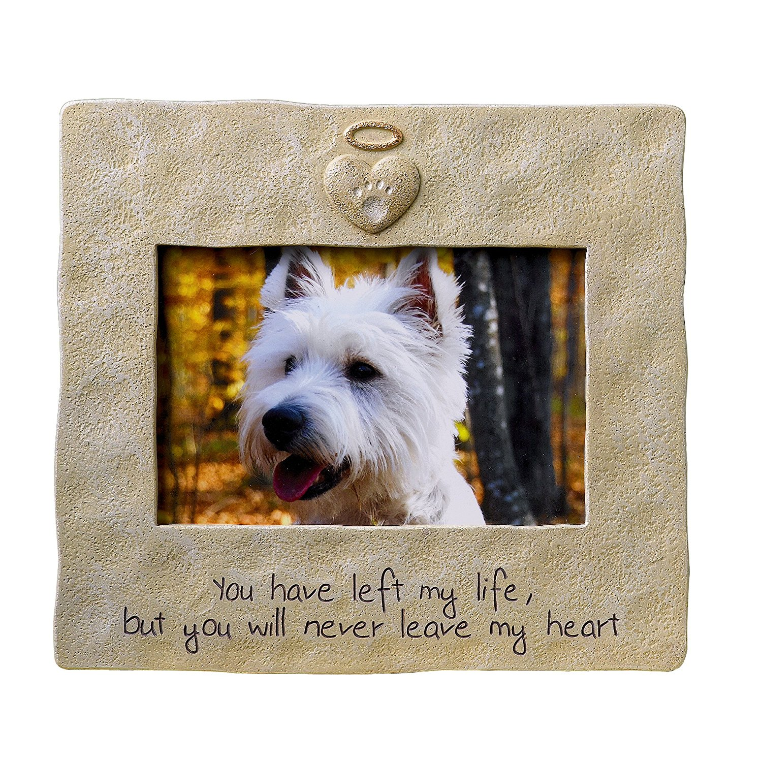 Pet cremation 5 helpful tips pet memorial frame solutioingenieria Image collections