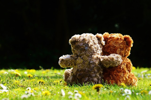 Teddy Hug for Comfort when Grieving the Loss of a Child