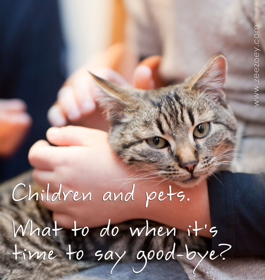 Child with Cat and Text What to do when it's time to say goodbye?