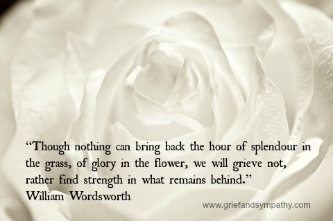 Wordsworth Quote on White Rose