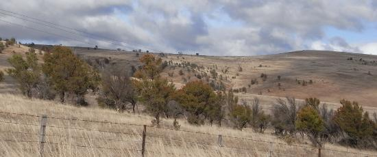 Bleak landscape reflecting the feelings of losing a job