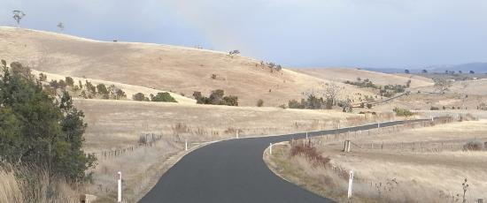 A winding road like a journey through grief