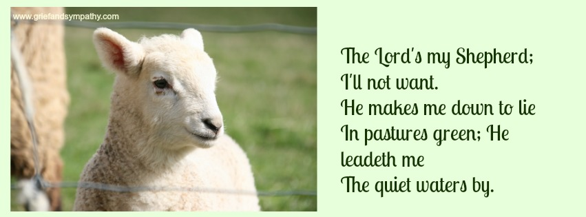 Lamb with Lyrics to The Lord's My Shepherd