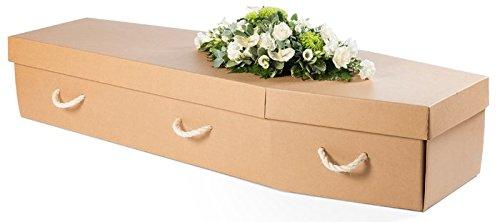 Plain Cardboard Coffin