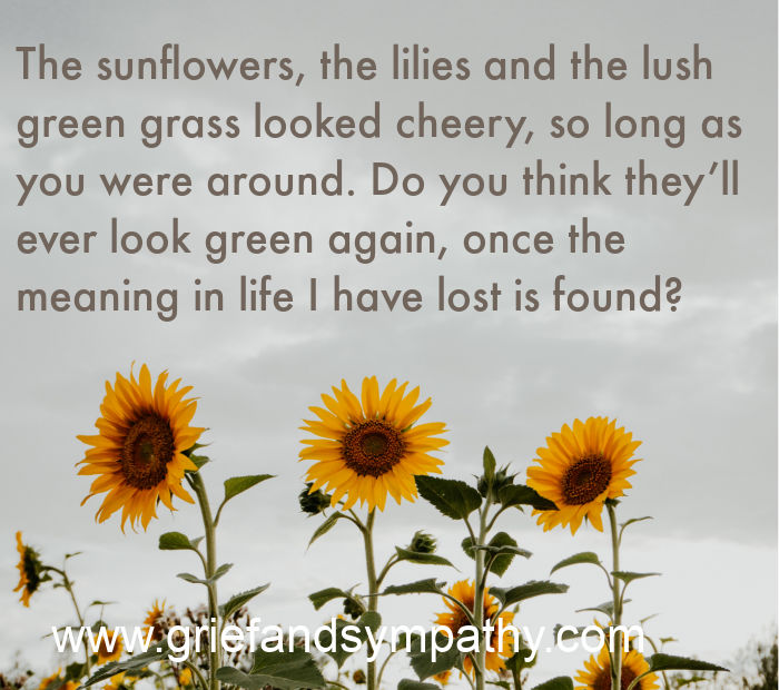 Meme - The sunflowers, the lilies and the lush green grass looked cheery, so long as you were around. Do you think they'll ever look green again, once the meaning in life I have lost is found?