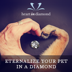 Heart in Diamond for Pets