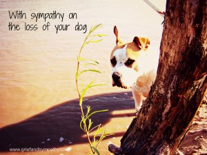 With Sympathy for Loss of Your Dog Card